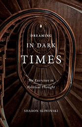 Dreaming in Dark Times book cover